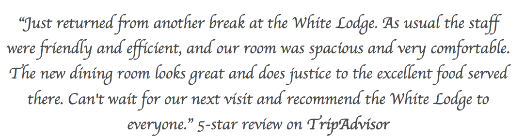 Review-White-Loge-hotel